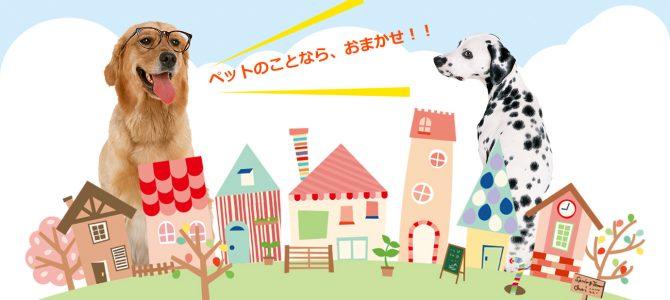 愛知県名古屋市ペットショップ PET TOWN